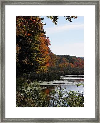 Just Simple Beauty Framed Print by Kim Galluzzo Wozniak