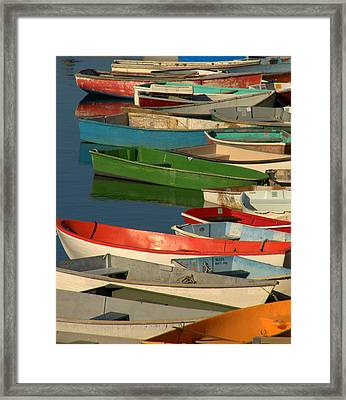 Framed Print featuring the photograph Just Waiting by Caroline Stella