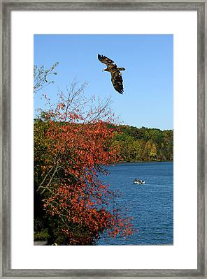 Framed Print featuring the photograph Juvenile And Fishermen by Randall Branham