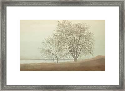 Kah Tai Fog Framed Print