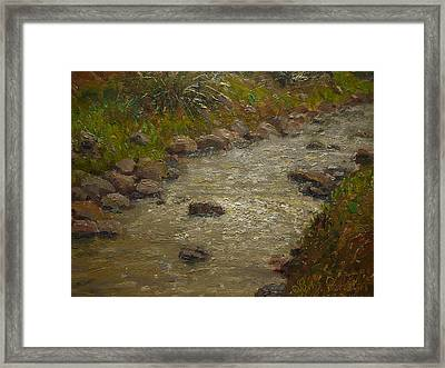 Kaikorai Stream After Rain Framed Print
