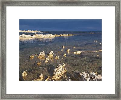 Framed Print featuring the photograph Kaikoura Coast by Peter Mooyman