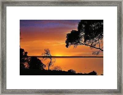 Kangaroo Island - Sunrise Framed Print by David Barringhaus