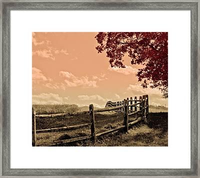 Kansas Framed Print by Trish Tritz