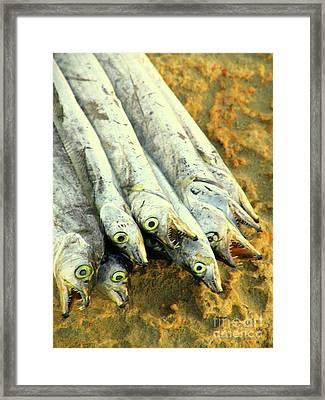 Kappa Tau Baita Framed Print