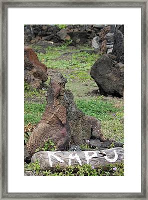 Kapu Heiau Framed Print by Elizabeth  Doran