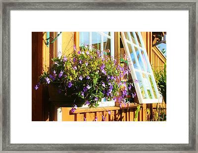 Kathy's Violet Basket Framed Print