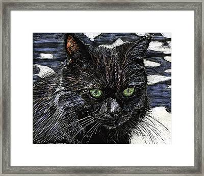 Katie The Cat Framed Print by Robert Goudreau