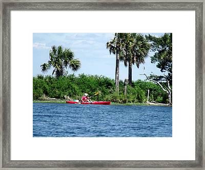 Kayaking Along The Gulf Coast Fl. Framed Print by Marilyn Holkham