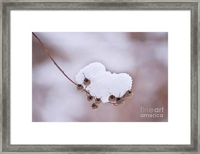 Keep Me...  Framed Print by Angela Doelling AD DESIGN Photo and PhotoArt