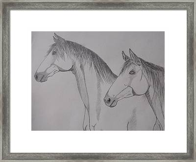Keiger Mustangs Framed Print by Gerald Strine