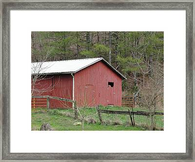 Framed Print featuring the photograph Kentucky Life by Tiffany Erdman