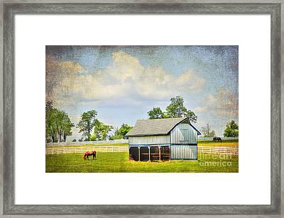 Kentucky Pastures Framed Print