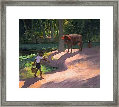 Kerala Backwaters Framed Print