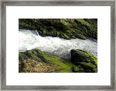 Ketchikan Creek 2 Framed Print by Randall Weidner
