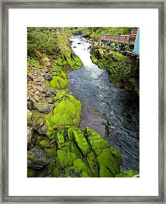 Ketchikan Creek 3 Framed Print by Randall Weidner
