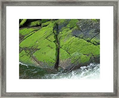 Ketchikan Creek 4 Framed Print by Randall Weidner