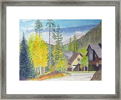 Keystone Co Framed Print