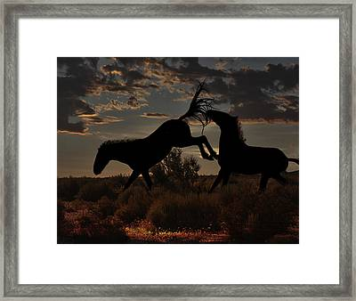 Framed Print featuring the photograph Kick by Tammy Espino