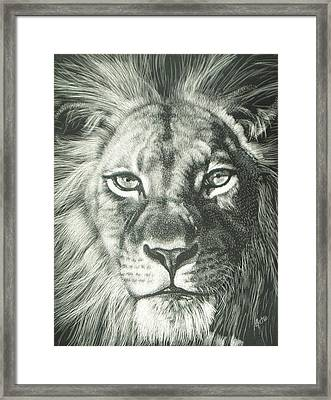 King 2 Framed Print by Joanna Gates