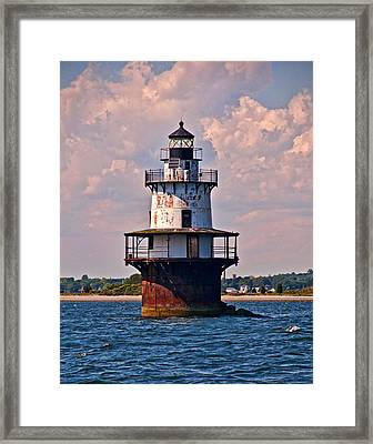 Framed Print featuring the photograph King Of The Bay by Nancy De Flon