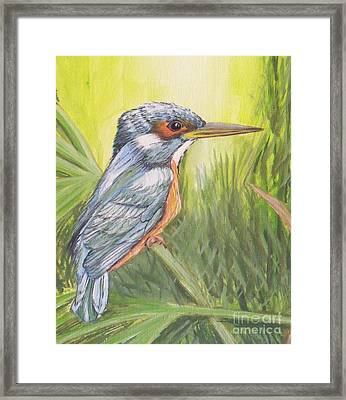 Kingfisher Framed Print by Debra Piro