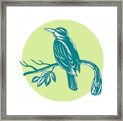 Kingfisher Perching On Branch Woodcut Framed Print by Aloysius Patrimonio
