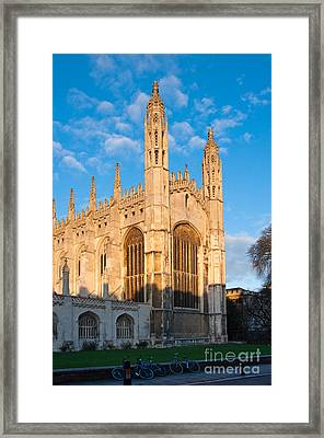 Framed Print featuring the photograph Kings by Andrew  Michael