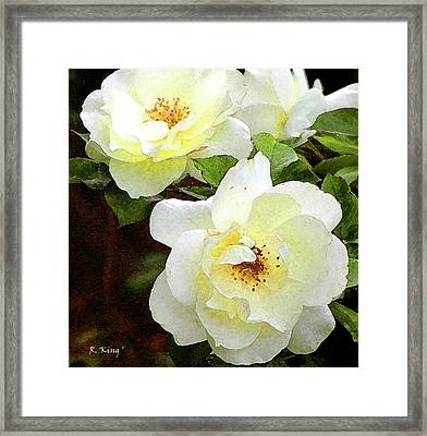 Framed Print featuring the photograph Kissed By The Sun by Roena King