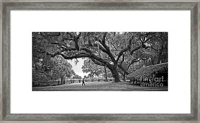 Framed Print featuring the photograph 1860 Kissimee Cow Camp  4  Bw by Larry Nieland