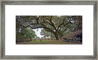 Framed Print featuring the photograph Kissimmee Cow Camp 4 by Larry Nieland