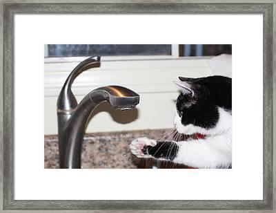 Kitchen Faucet Framed Print