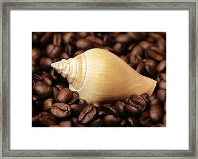 Kitchen Pictures Coffee Beans Snail Framed Print by Falko Follert