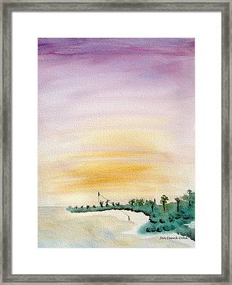 Kite Lady Framed Print by Jan Deswik