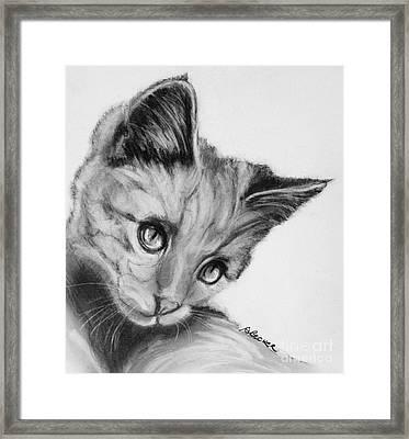 Kitten Cameo Framed Print by Susan A Becker