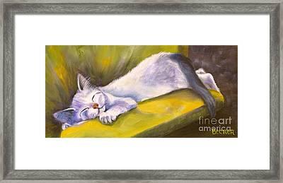 Kitten Dream Framed Print by Susan A Becker