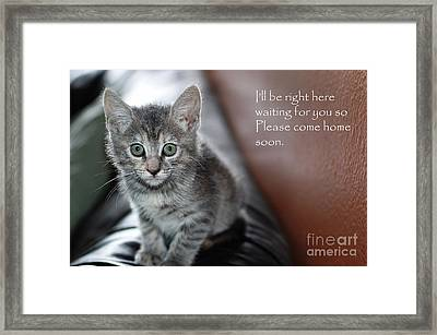 Kitten Greeting Card Framed Print by Micah May