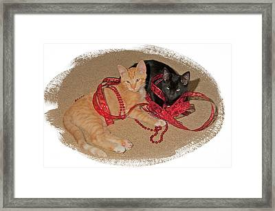 Kittens Ribbons And Beads Framed Print
