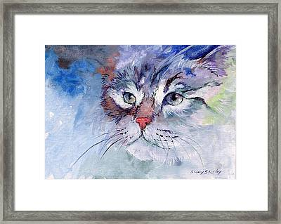 Kitty In Blue Framed Print by Sherry Shipley