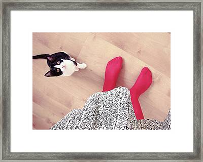 Kitty Looking At Woman Framed Print by Gesrules