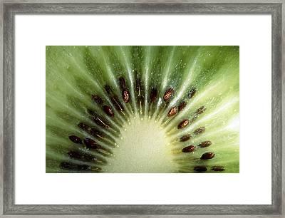 Kiwi Slice Framed Print by Vaughan Fleming