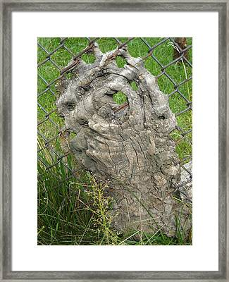 Framed Print featuring the photograph Knot In Fence 2 by Christophe Ennis