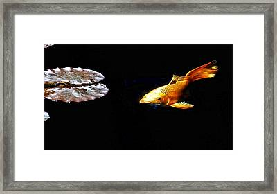 Koi And Lillies Framed Print