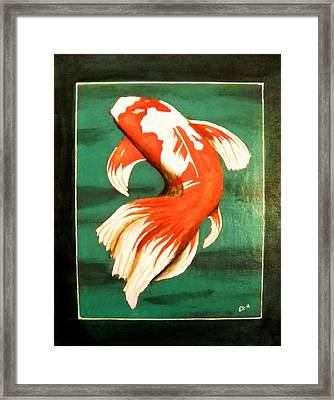 Koi Fish Framed Print by Edwin Alverio