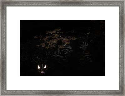 Koi In The Night Framed Print by Viktor Savchenko