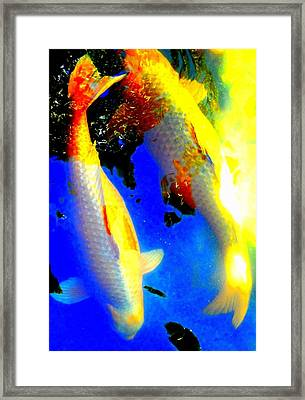 Koi Story Two A Framed Print by Randall Weidner