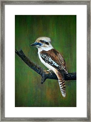 Kookaburra Framed Print by Lynn Hughes