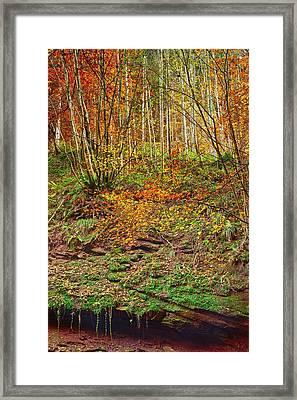 Kordel Framed Print