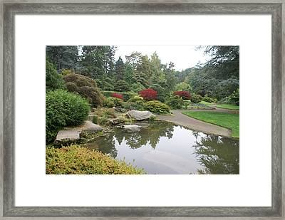 Kubota Park Framed Print by Jerry Cahill