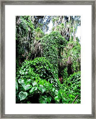 Kudzu Creature Framed Print by Christy Usilton